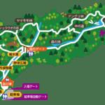 山田緑地×パルパークプロジェクト「焚き火の学び+α」