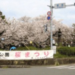 鷲塚公園桜まつり